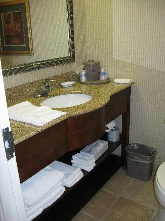 Hampton Inn Wytheville: Bath