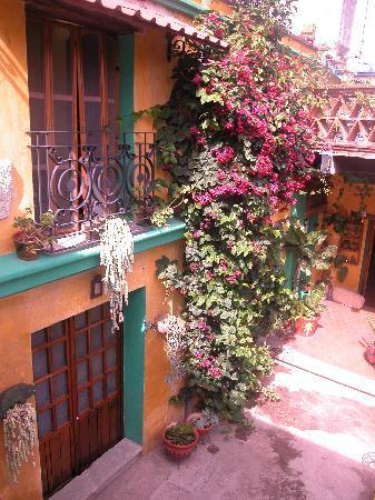 La Casa de los Abuelos: Front courtyard beauty