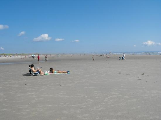 Ogunquit Beach: La plage de Ogunquit