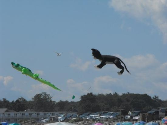 Ogunquit Beach: De drôles de cerfs-volant!