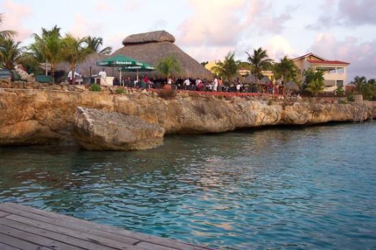 Buddy dive resort picture of bonaire caribbean - Bonaire dive resorts ...