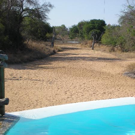 Kapama Private Game Reserve, Sør-Afrika: piscina con vistas