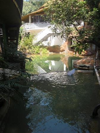Huarn Jana Boutique Resort: Pool