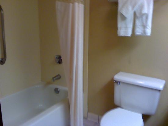 Hampton Inn Madison: Bathroom