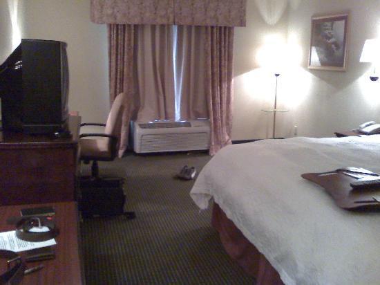 Hampton Inn Madison: Room