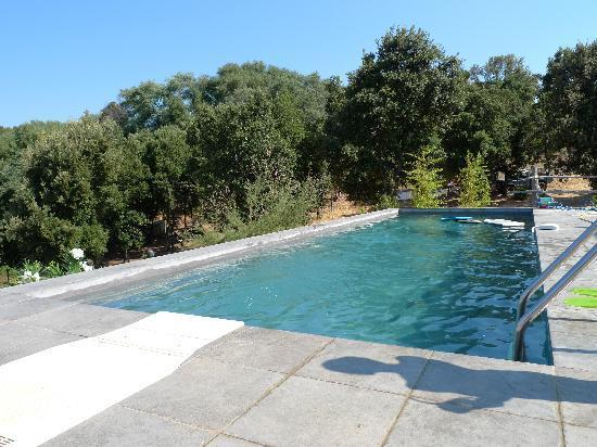 Maison d'hotes Ruone: piscine