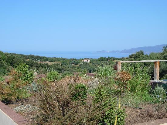 Maison d'hotes Ruone: vue mer de la piscine