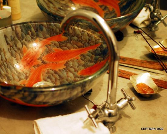 Riad Elizabeth: Fish Bowl Sink