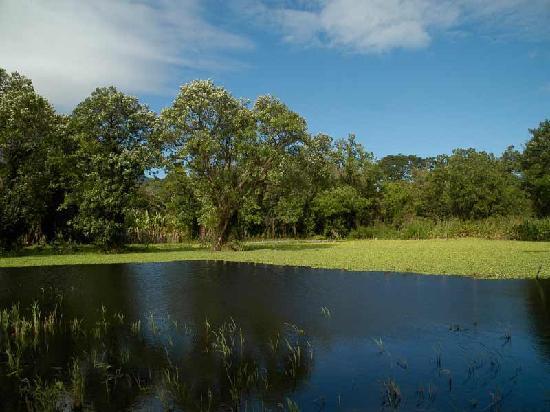 Finca San Juan de la Isla: Refugio de vida silvestre en los alrededores del albergue