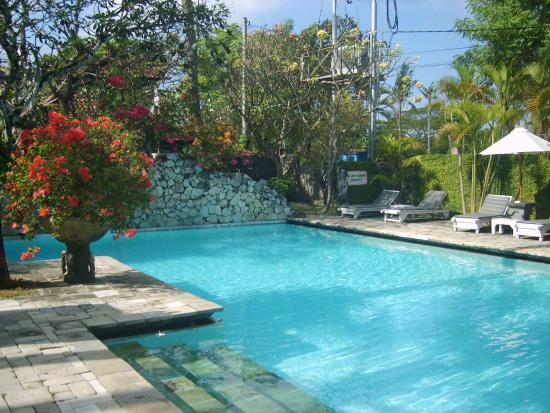 Hotel Palm Garden: The Pool