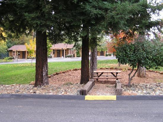 Paradise, Californie : Picnic bench area