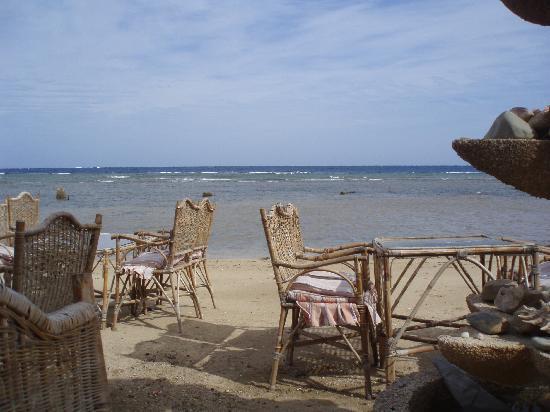 El Ferdous Fish Restaurant: romantic Red Sea