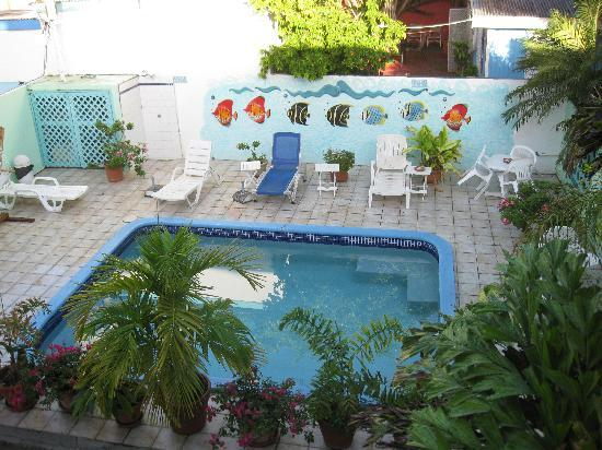 Turquoise Shell Inn: the cute little pool