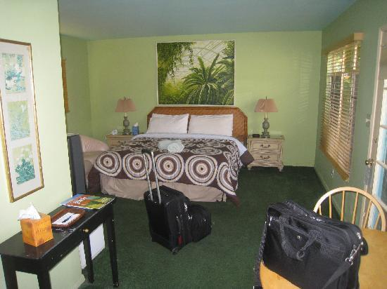 Vista Grande Resort - A Gay Mens Resort : My Room - # 16