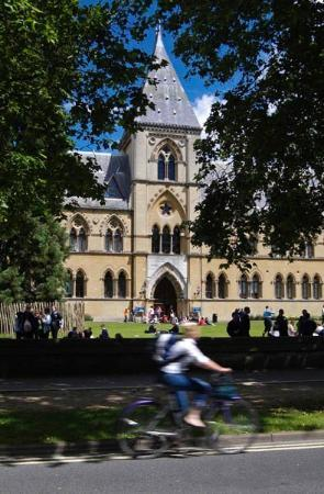 Oxford University Museum of Natural History: ....museum of natural history ....