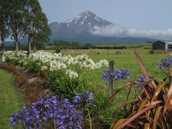 Villa Heights Bed and Breakfast: Mt. Taranaki