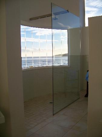 Bay Tree House: The walk in shower with a view.