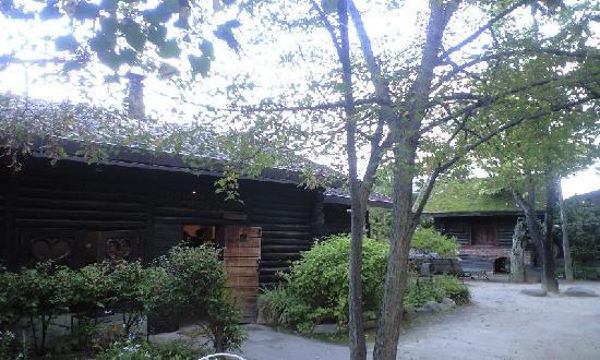 Azumino, Japonya: ミュージアムショップのあるグズベリーハウス