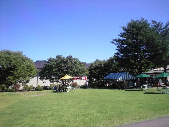 Kantenpapa Garden : 青々とした芝生の広場