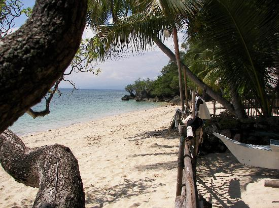 Glan, Philippines: View of Beach from Brod Louie Resort