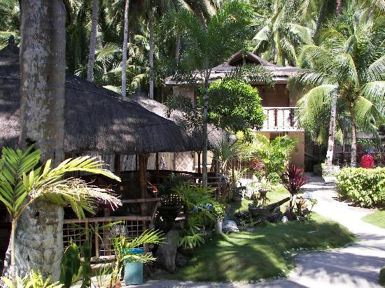 Glan, Philippines: Brod Louie grounds and open cottages