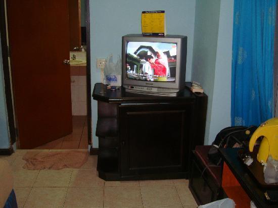 Batu Burok Beach Resort: TV