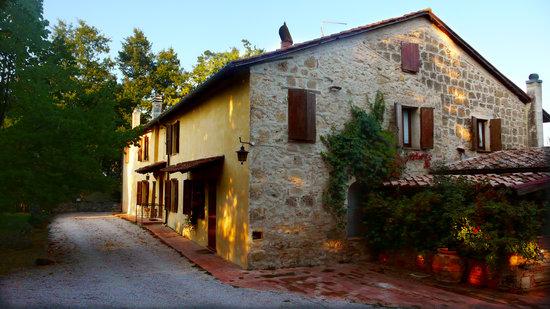 Cetona, Italia: Vista Principale B&B Podere Lamaccia