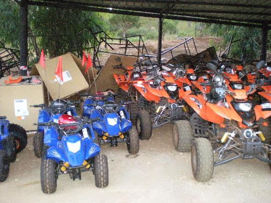 Pineland Hotel and Health Resort: ATV riding at pineland