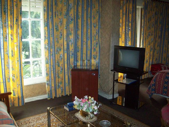 Hotel Foresta: Tv / window