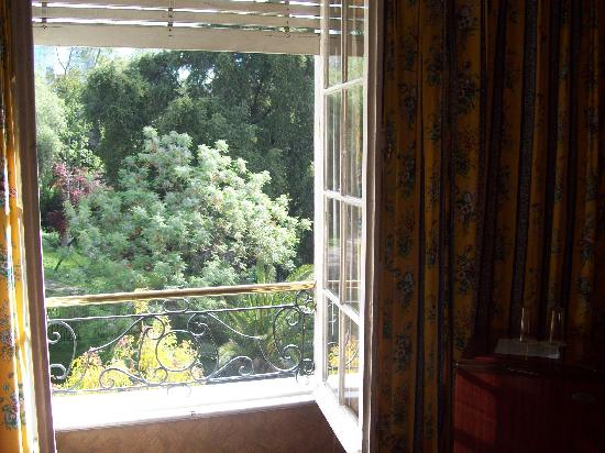 Hotel Foresta: Cerro Santa Lucia trees from our window