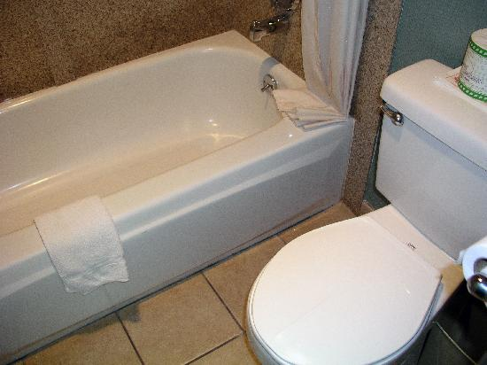 Avania Inn of Santa Barbara: bath tub