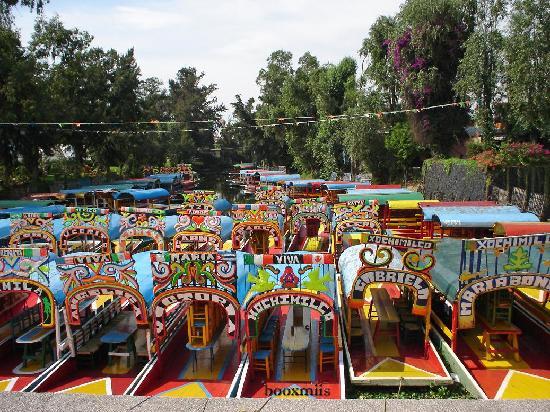 Mexico City Tours Viator