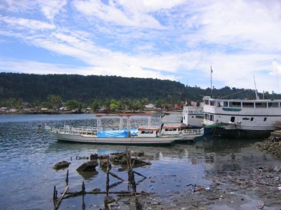 Lokasi:Pelabuhan Kapal Ikan, Sanggeng, Manokwari