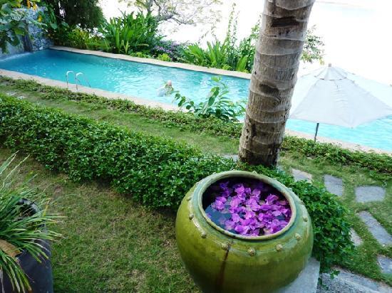 Mekong Estate: Swimming pool