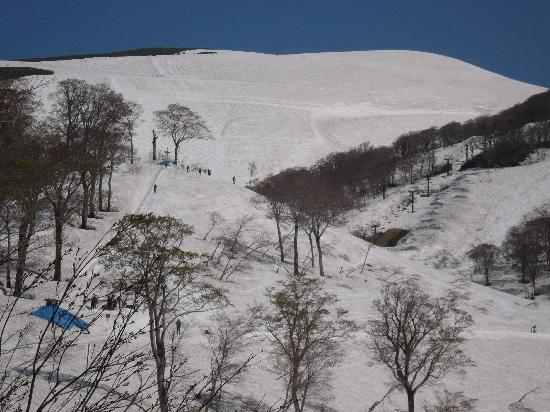 Lodge Yatsunami: 5月連休まではやつなみまでスキーでただいま!!