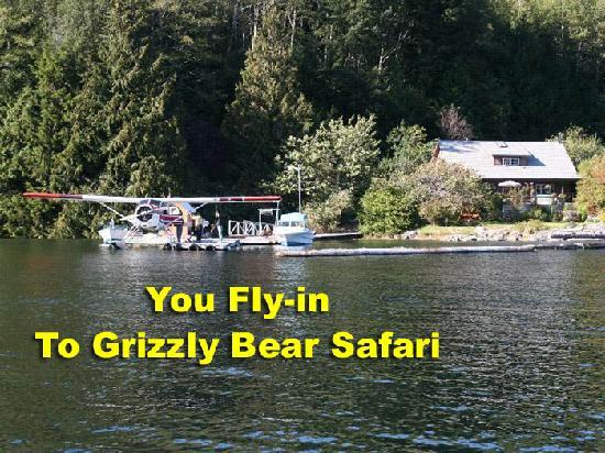Grizzly Bear Lodge & Safari: Grizzly Bear Safari - Grizzly Tours