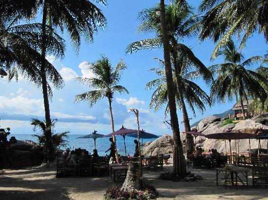 Charm Churee Villa: the beach