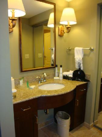 Homewood Suites by Hilton Jacksonville Downtown/Southbank : another view of the bathroom