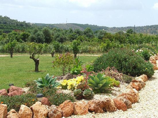 Duas Quintas: Front gardens