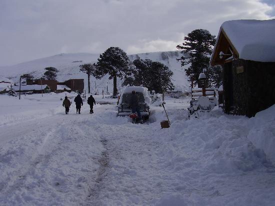 Hosteria Kallfu: Un paisaje para soñar!!!