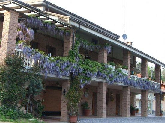 Agriturismo Doremi: Amiamo il verde ed i fiori...