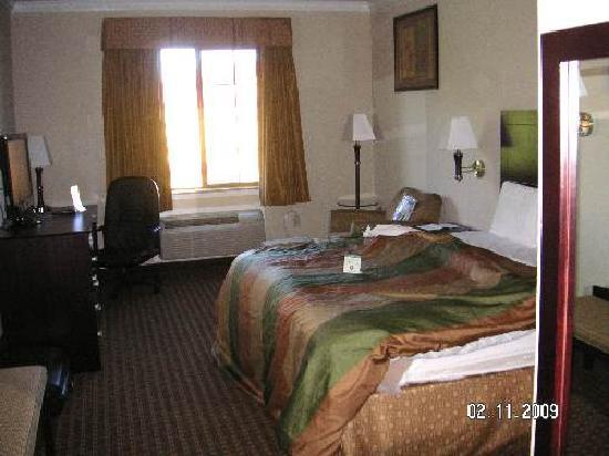 Super 8 IAH West / Greenspoint: Bedroom