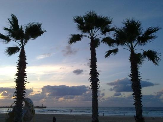 Asdod, Israel: Ashdod beach, 14.11.09. Sunset.