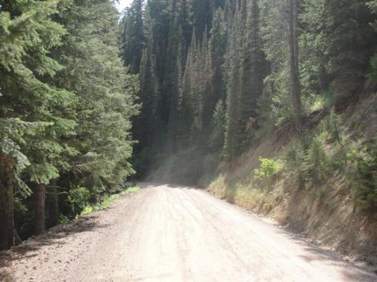 Bitterroot Valley Photo