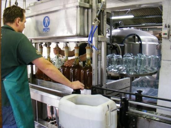 Healey's Cornish Cyder Farm: watching the cider being bottled