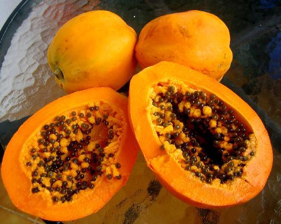 كومفورتيل دو تشامب: Fresh fruits for breakfast from the nature island
