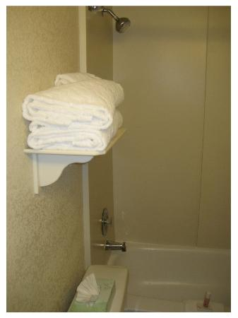 La Quinta Inn & Suites Clifton / Rutherford: We liked the towels