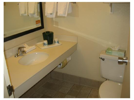 La Quinta Inn & Suites Clifton / Rutherford: Decent-size bathroom
