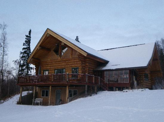 A Moose in the Garden: A view of the B&B