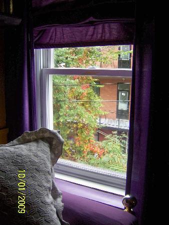 Au GitAnn B&B : Fall Through Our Window